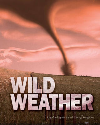 Great Big Book of Wild Weather by Angela Royston, Jenny Vaughan