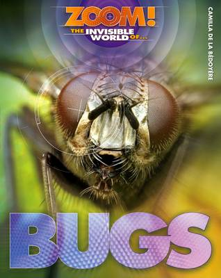 The Invisible World of Bugs by Camilla De la Bedoyere
