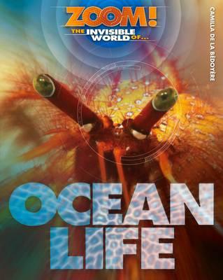 The Invisible World of Ocean Life by Camilla De la Bedoyere