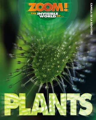 The Invisible World of Plants by Camilla De la Bedoyere