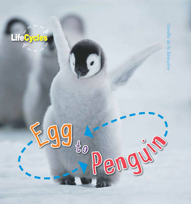 Life Cycles: Egg to Penguin by Camilla De la Bedoyere