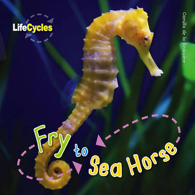 Life Cycles: Fry to Seahorse by Camilla De la Bedoyere