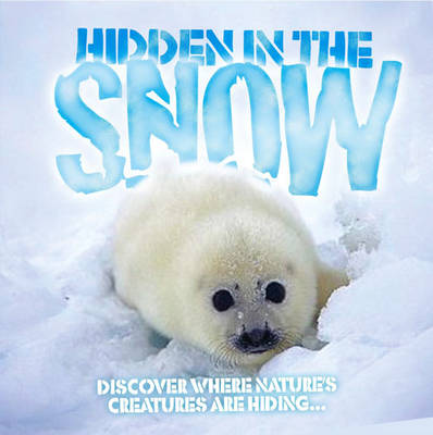 Hidden in the Snow by Barbara Taylor