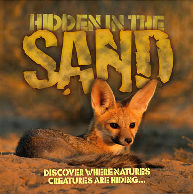 Hidden in the Sand by Barbara Taylor