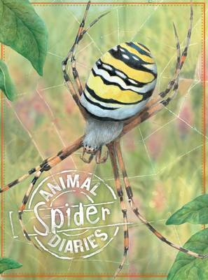 Animal Diaries: Spider by Steve Parker