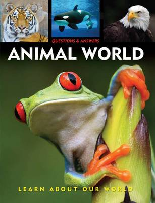 Questions & Answers: Animal World Learn About Our World by