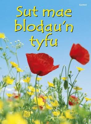 Sut Mae Blodau'n Tyfu? by Emma Helbrough