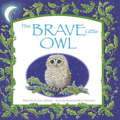 The Brave Little Owl by Davies Gill