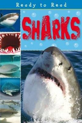 Sharks by Sarah Creese