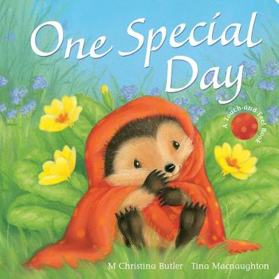 One Special Day by M. Christina Butler, Tina MacNaughton