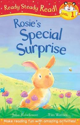 Rosie's Special Surprise by Julia Rawlinson