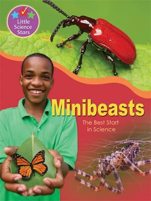 Little Science Stars: Minibeasts by Jenny Vaughan