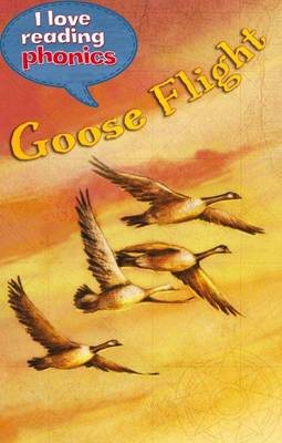 I Love Reading Phonics Level 5: Goose Flight by Lucy M. George, Abigail Steel