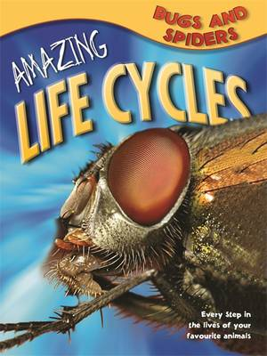 Amazing Life Cycles: Bugs and Spiders by