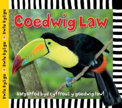 Coedwig Law by Sarah Powell