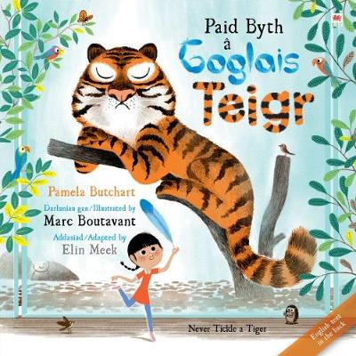 Paid Byth a Goglais Teigr/Never Tickle a Tiger by Pamela Butchart