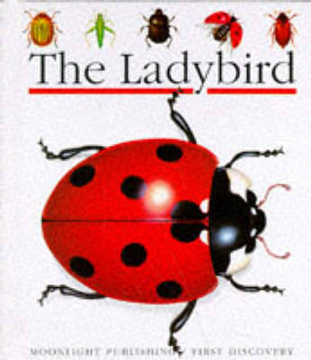 The Ladybird by S. Matthews