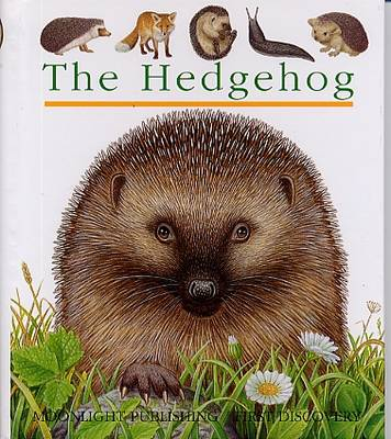 The Hedgehog by Pierre de Hugo
