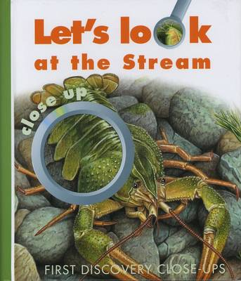 Let's Look at the Stream by Caroline Allaire