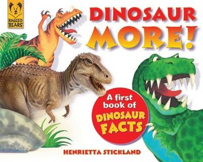 Dinosaur More A First Book of Dinosaur Facts by Henrietta Strickland