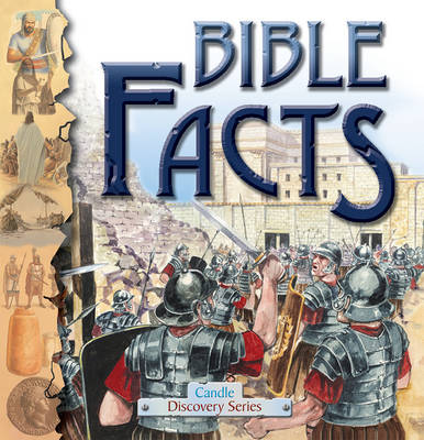 Bible Facts by Anne Adams