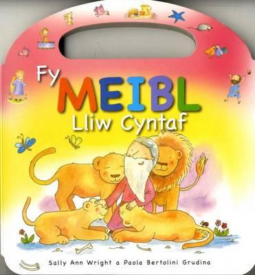 Fy Meibl Lliw Cyntaf by Sally Ann Wright