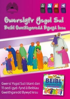 Gwerslyfr Ysgol Sul Beibl Gweithgaredd Bywyd Iesu by Ann Bowen Morgan, Delyth Morgans Phillips