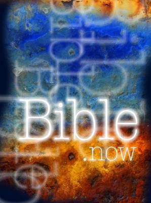 Bible Now Re-Telling of Bible Stories for the Older Reader by Rhonda Davies