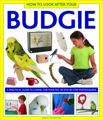 How to Look After Your Budgie A Practical Guide to Caring for Your Pet, in Step-by-step Photographs by David Alderton
