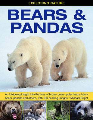Exploring Nature: Bears & Pandas An Intriguing Insight into the Lives of Brown Bears, Polar Bears, Black Bears, Pandas and Others, with 190 Exciting Images by Michael Bright