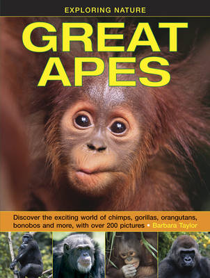 Exploring Nature: Great Apes by Barbara Taylor