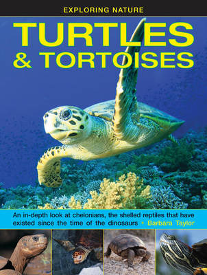 Exploring Nature: Turtles & Tortoises An in-Depth Look at Chelonians, the Shelled Reptiles That Have Existed Since the Time of Dinosaurs by Barbara Taylor