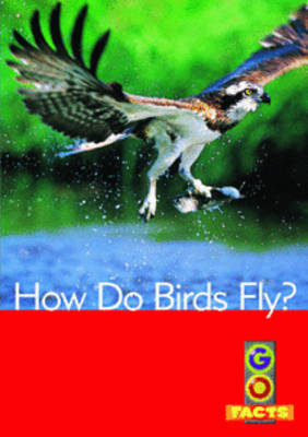How Do Birds Fly? by
