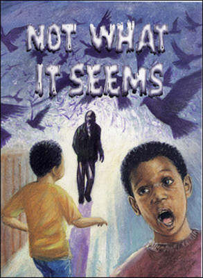 Not What it Seems by Peter Mair, Dot Meharry, Tom Pipher, Paul Reeder