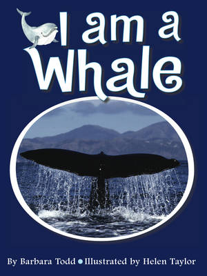 I am a Whale by Barbara Todd