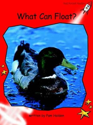 What Can Float? Early by Pam Holden