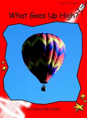 What Goes Up High? Early by Pam Holden