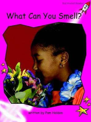 What Can You Smell? Emergent by Pam Holden