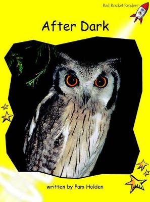 After Dark Early by Pam Holden