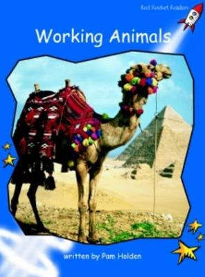 Working Animals Early by Pam Holden