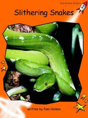 Slithering Snakes Fluency by Pam Holden