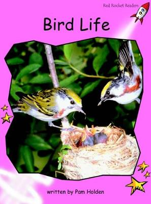 Bird Life Pre-reading by Pam Holden