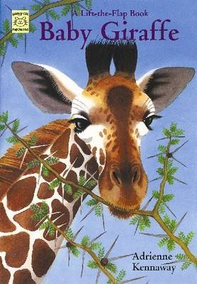 Baby Giraffe A Lift-the-flap Book by Adrienne Kennaway