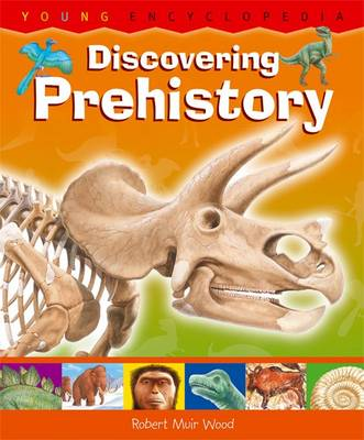 Discovering Prehistory by R. Muir Wood