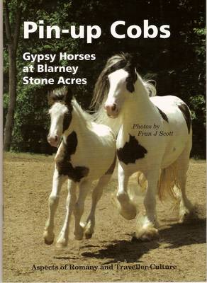 Pin-up Cobs Gypsy Horses at Blarney Stone Acres by Fran Scott