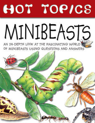 Minibeasts by Gerald Legg