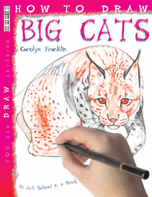 How to Draw Big Cats by David Stewart