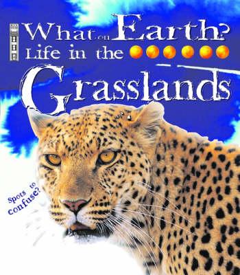 Grassland by Catherine Chambers