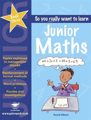 Junior Maths Book 3 by David Hillard
