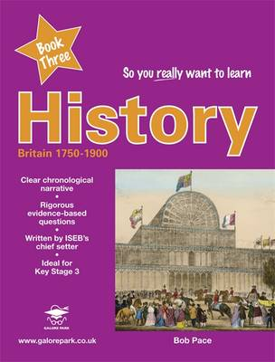 So You Really Want to Learn History Book 3 by Bob Pace